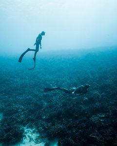 Freediving-Explore-240x300