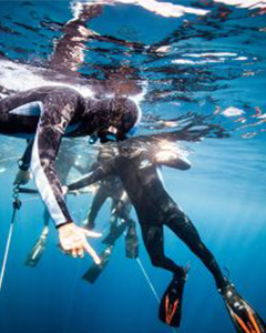 freediving surface